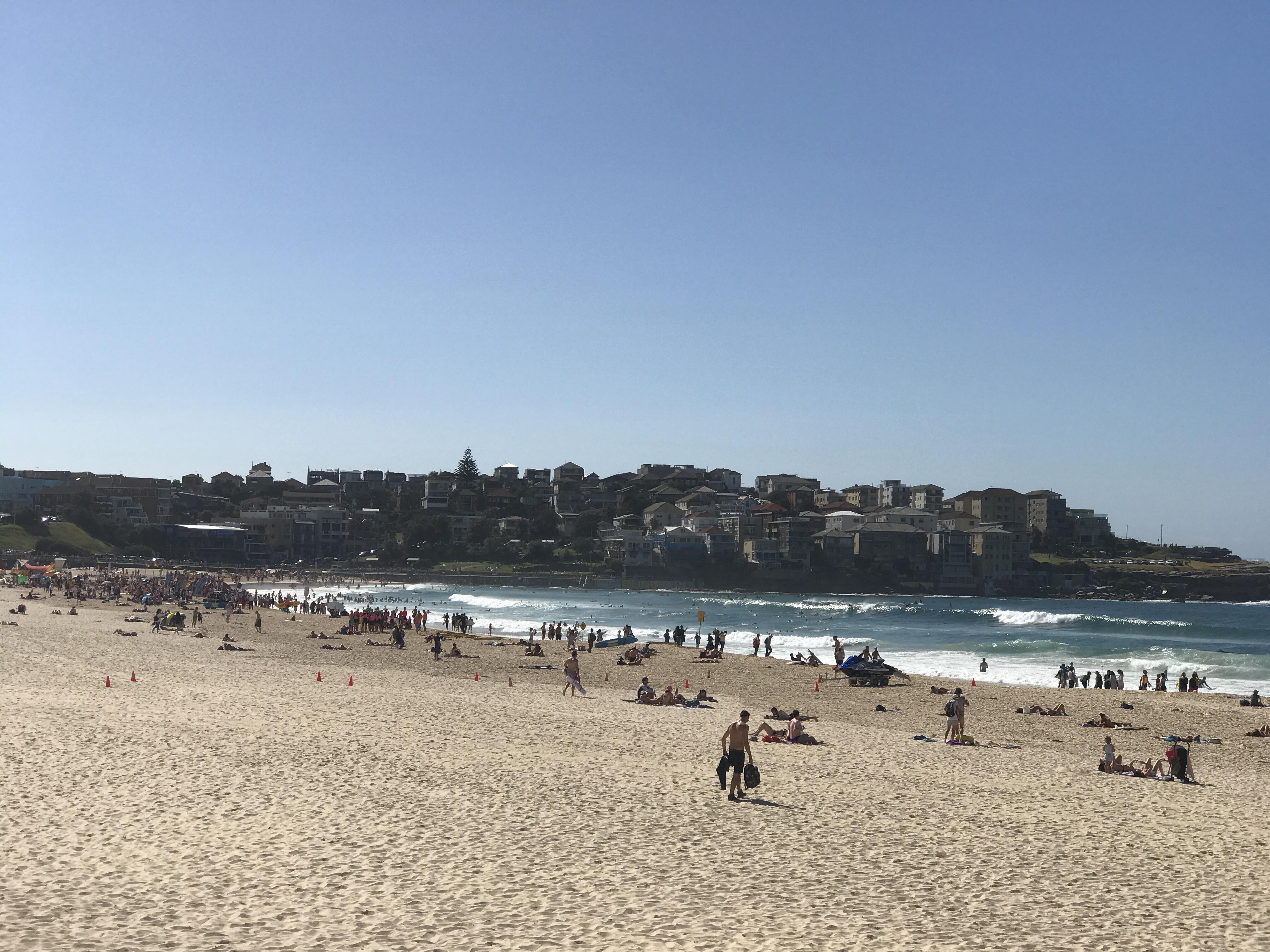 Beachlife Top 5