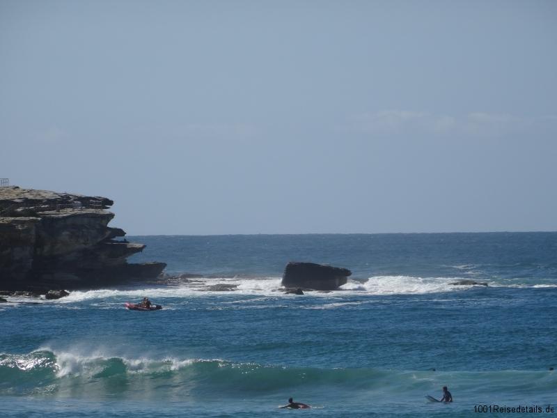 Sydney Bondi Beach Sightseeing
