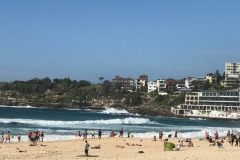 Sydney Bondi Beach Sightseeing